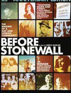 Перед Стоунвольскими бунтами: Становление гей-лесбийского сообщества