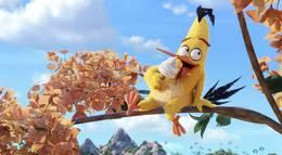 """Кадр из фильма """"Angry Birds в кино"""" - 2"""