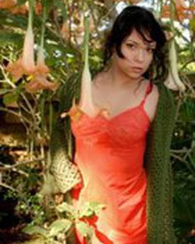 Джолей Суисайд фото