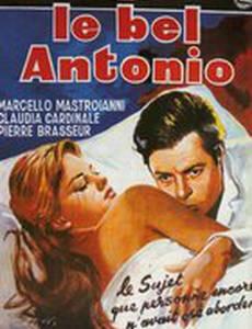 Красавчик Антонио