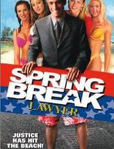 Адвокат на каникулы