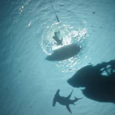 """Кадр из фильма """"Пираты Карибского моря: Мертвецы не рассказывают сказки (Пираты Карибского моря: Месть Салазара)"""" - 8"""