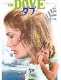 """Постер из фильма """"Голубь"""" - 1"""