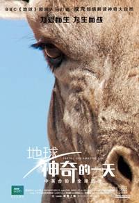 Постер Земля: Один потрясающий день