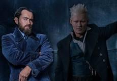 Режиссер «Фантастических зверей» подтвердил гомосексуальность Дамблдора
