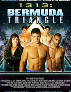 1313: Бермудский треугольник (видео)