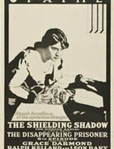 The Shielding Shadow