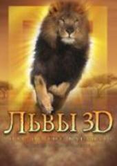 Львы 3D