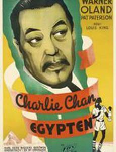Чарли Чан в Египте