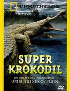 Гигантский крокодил