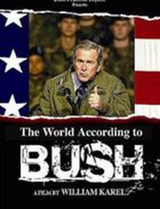Мир согласно Бушу