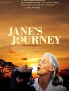Путешествие Джейн