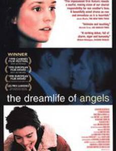 Воображаемая жизнь ангелов