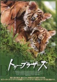 Постер Два брата