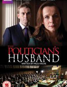 Муж женщины-политика (мини-сериал)