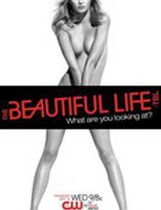 Красивая жизнь