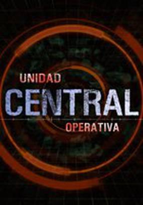 Центральная оперативная группа