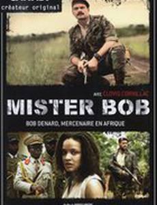 Мистер Боб