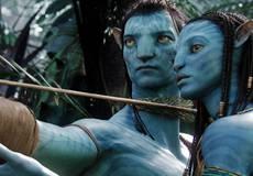 Джеймс Кэмерон отрапортовал о ходе работы над сиквелами «Аватара»