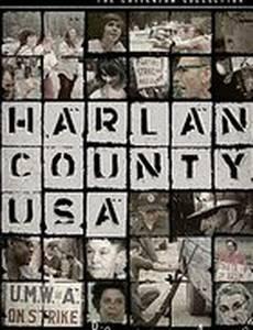 Округ Харлан, США