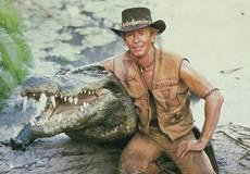 На экраны выйдет продолжение «Крокодила Данди»