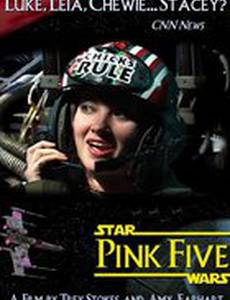 Pink Five (видео)
