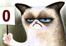 В Голливуде снимут фильм о самом сердитом коте в мире