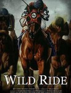 Бешеная езда