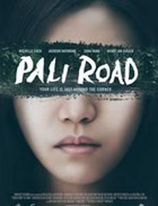 Дорога на Пали