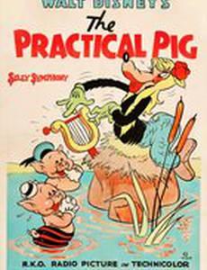 Практичная свинья