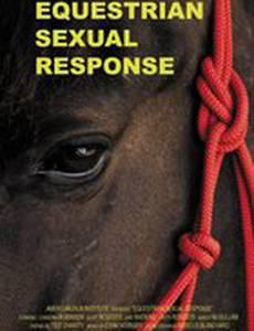 Сексуальные реакции лошадей