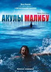 Акулы Малибу