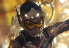 «Человек-муравей и Оса» подскажет, что произойдет в четвертых «Мстителях»