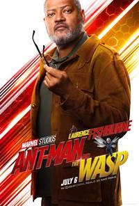 Постер Человек-муравей и Оса