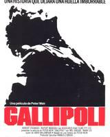 """Постер из фильма """"Галлиполи"""" - 6"""