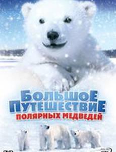 Большое путешествие полярных медведей