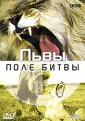 BBC: Львы. Поле битвы (видео)
