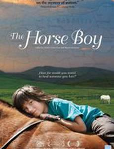 Мальчик и лошади