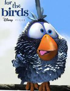 О птичках