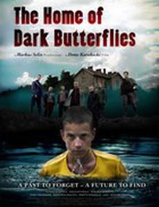 Дом темных бабочек