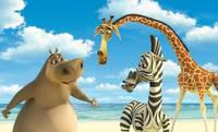 Кадр Мадагаскар
