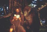 """Кадр из фильма """"Джордж из джунглей"""" - 3"""