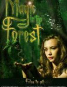 Magic in the Forest