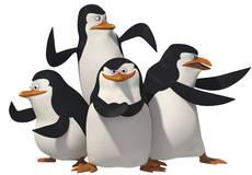 Пингвинам «Мадагаскара» посвятят полнометражку