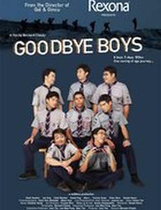 До свидания, мальчики! (видео)