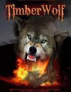 Лесной волк