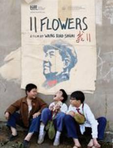 11 цветов