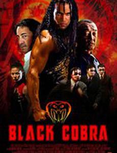 Черная кобра (видео)