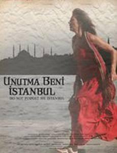 Не забывай меня, Стамбул
