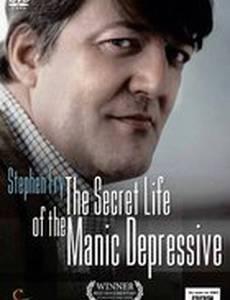 Безумная депрессия со Стивеном Фраем